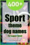 400 sport theme dog names for super fans!
