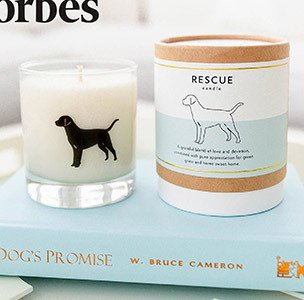 rescue dog candle