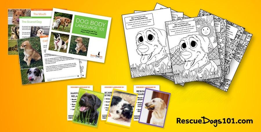 Dog Body Language – Learning Set
