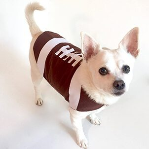 Thanksgiving dog football outfit