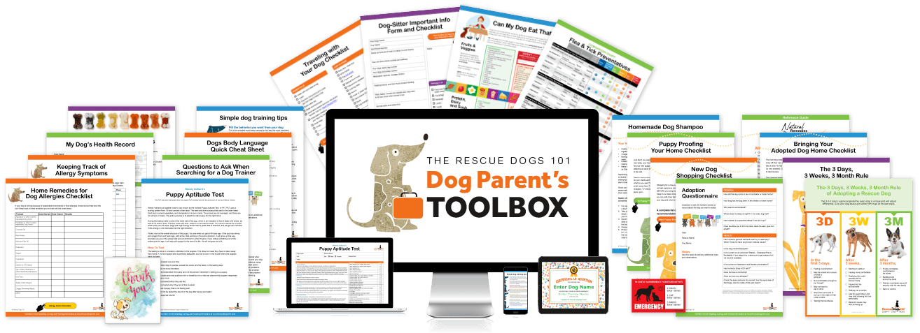The Rescue Dogs 101 Dog Parents Toolbox
