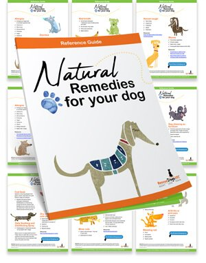 Rescue Dogs 101's Natural Remedies Reference Guide
